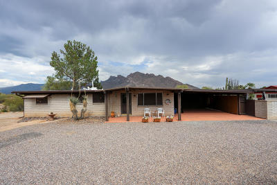 Tucson Single Family Home For Sale: 9430 N Raleigh Place