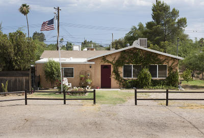 Tucson Single Family Home For Sale: 850 E Graybill Drive