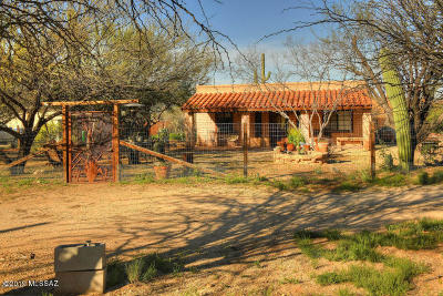 Pima County, Pinal County Single Family Home For Sale: 12350 E Prince Road
