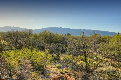 Tucson Residential Lots & Land For Sale: 12350 E Prince Road