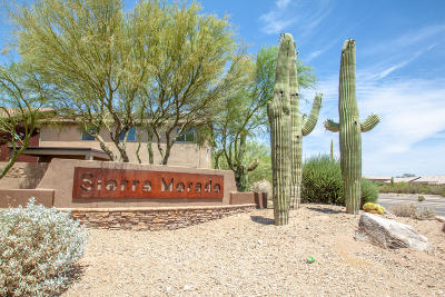 Tucson Single Family Home Active Contingent: 10579 E Desert Drifter Place