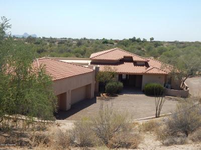 Tucson Single Family Home For Sale: 9971 N Rabwa Place