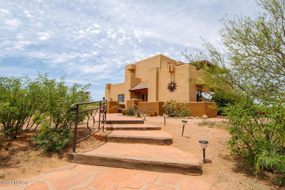 Cochise County Single Family Home For Sale: 10693 N Stagecoach Pass