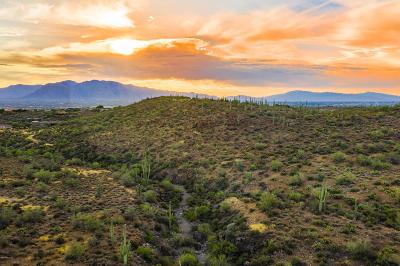 Tucson Residential Lots & Land For Sale: 4125 N Gerhart Road