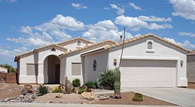 Green Valley Single Family Home For Sale: 2289 S Via Massari