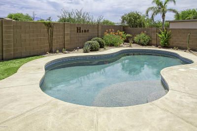 Tucson Single Family Home Active Contingent: 8252 N Stonehill Drive
