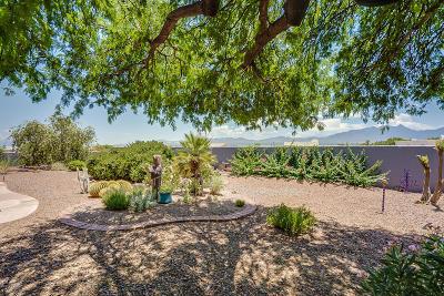 Green Valley Single Family Home Active Contingent: 1157 W Placita Refinada