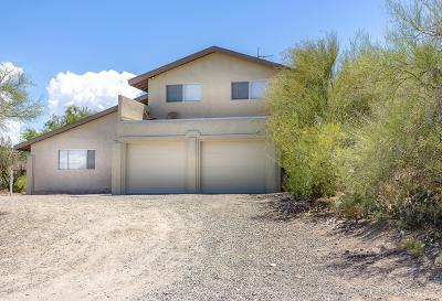 Tucson Single Family Home For Sale: 2645 W Wallye Place