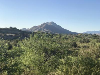 Rio Rico Residential Lots & Land For Sale: 127 Circulo Botas #47