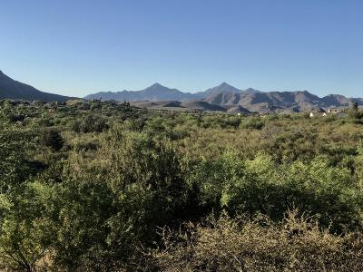 Rio Rico Residential Lots & Land For Sale: 129 Circulo Botas #48