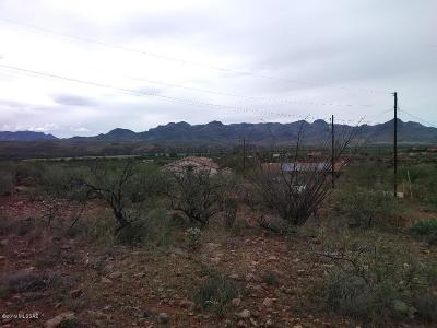 Rio Rico Residential Lots & Land For Sale: 1623 Canta Court #76