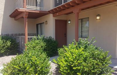 Tucson Condo For Sale: 3357 N Country Club Road #37