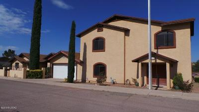 Santa Cruz County Single Family Home For Sale: 2379 N Calle Nogales