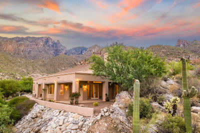 Tucson Single Family Home For Sale: 4080 E Playa De Coronado