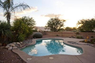Tucson Single Family Home For Sale: 2991 W Corte Olivia