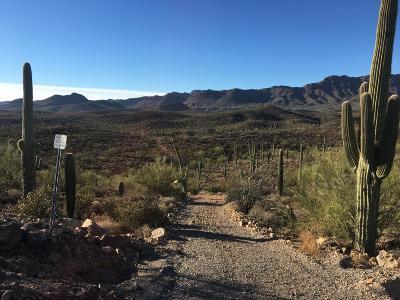 Tucson Residential Lots & Land For Sale: 4025 N Gerhart Road