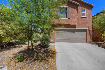 Pima County Single Family Home Active Contingent: 9495 S Crowley Brothers Drive