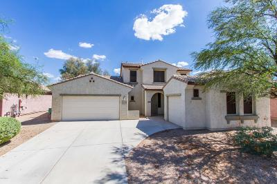 Marana Single Family Home For Sale: 11619 W Emmer Drive