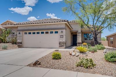 Sahuarita Single Family Home Active Contingent: 1340 W Via Cerro Colorado