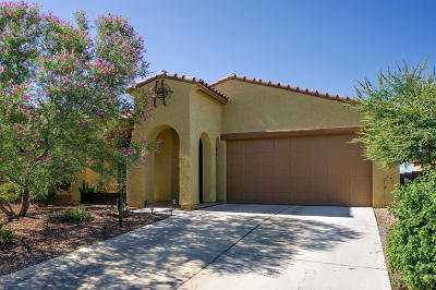 Marana Single Family Home For Sale: 11996 N Golden Mirror Drive