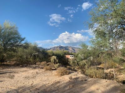 Tucson Residential Lots & Land For Sale: 5995 N Pete Dawson Road