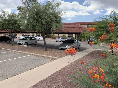 Tucson Condo For Sale: 6322 N Barcelona Lane #519