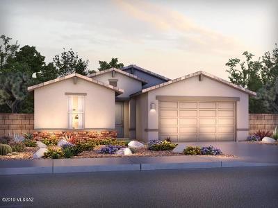 Tucson Single Family Home For Sale: 2815 W Shannon Ridge Road