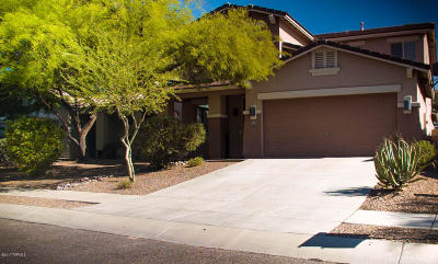 Oro Valley Single Family Home For Sale: 979 W Thornbush Place