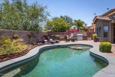 Tucson Single Family Home Active Contingent: 8328 N Amber Burst Drive