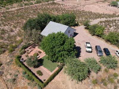 Cochise County Single Family Home For Sale: 1235 N Dog Ranch Trail