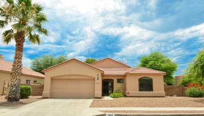 Pima County, Pinal County Single Family Home For Sale: 7620 E Golden River Lane