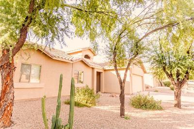 Tucson Single Family Home For Sale: 8016 N Iron Ridge Drive