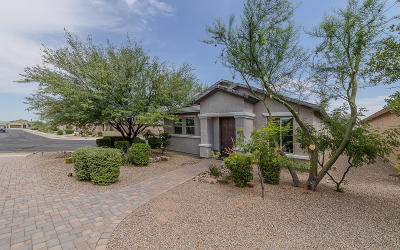 Vail Single Family Home For Sale: 10237 S Rose Wagon Way