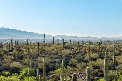 Tucson Residential Lots & Land For Sale: W Lazy C Drive