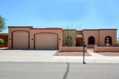 Sahuarita Single Family Home For Sale: 17851 S Camino De Loreto