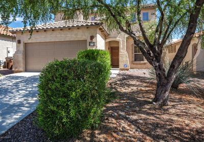 Sahuarita Single Family Home For Sale: 920 W Via De Gala