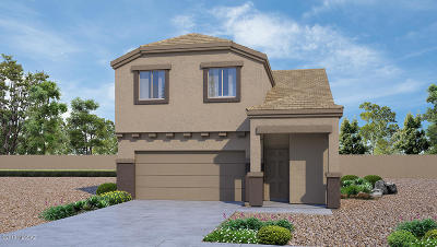 Tucson Single Family Home For Sale: 3368 N Dales Crossing Drive