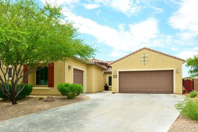 Tucson Single Family Home For Sale: 5880 S Fiorenza Place