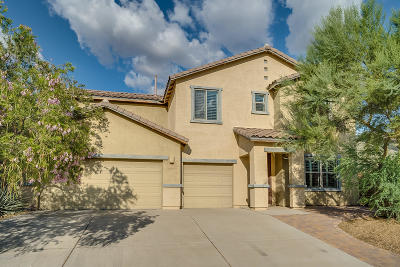Sahuarita Single Family Home For Sale: 1079 E Pecan Orchard Loop