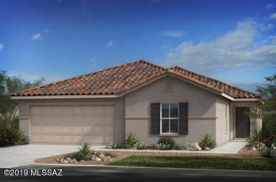 Tucson Single Family Home For Sale: 8631 N Rome Court