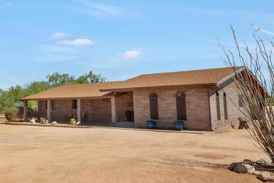 Tucson Single Family Home For Sale: 7280 S Marstellar Road