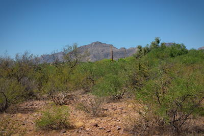 Tubac Residential Lots & Land For Sale: Veranera Court #60