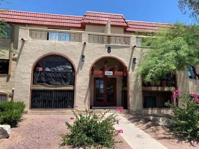 Tucson Condo For Sale: 6351 N Barcelona Court #819