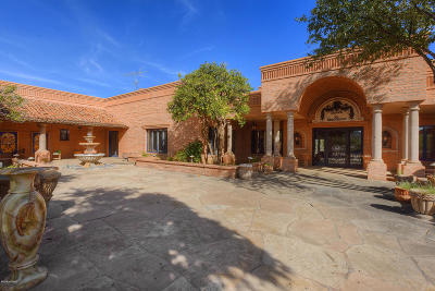 Tucson Single Family Home For Sale: 1620 W Niner Way