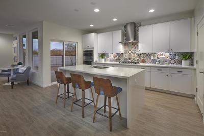 Pima County Single Family Home For Sale: 8679 E Avant Garde Way