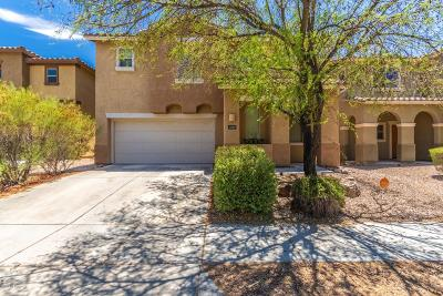Paseo Del Rio Single Family Home For Sale: 1595 W Gleaming Moon Lane