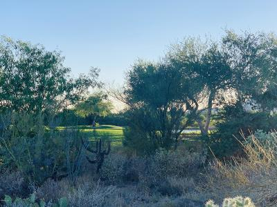 Residential Lots & Land For Sale: 14371 N Giant Saguaro Place #29