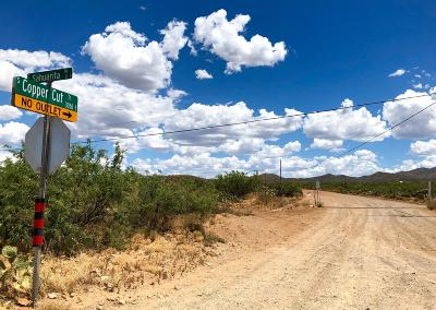 Residential Lots & Land For Sale: 17765 S Copper Cut Trail