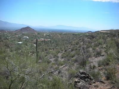 Residential Lots & Land Active Contingent: 7119 W El Camino Del Cerro