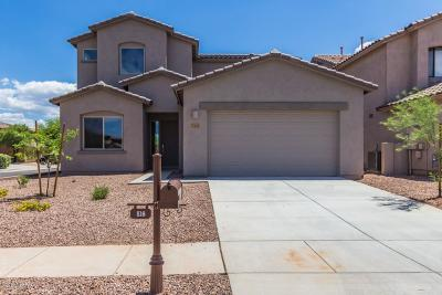 Sahuarita Single Family Home For Sale: 516 E Placita Boton